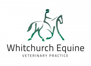 WHITCHURCH EQUINE VETERINARY PRACTICE